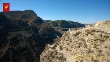 POBLADO ARGARICO DE CASTELLON ALTO EN GALERA