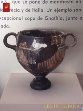 COPA DE GNATHIA