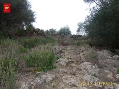 02-acceso-al-cerro-desde-cara-sur